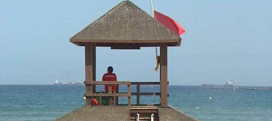 Actualidad Actualidad Avistan un tiburón en una playa de Fuengirola